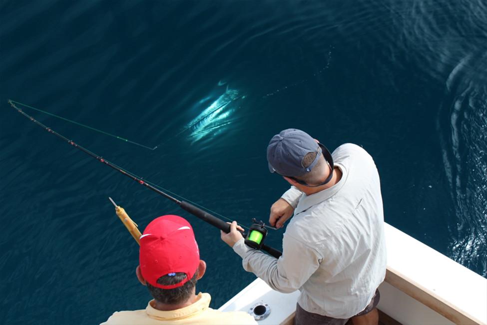 навиване на риба
